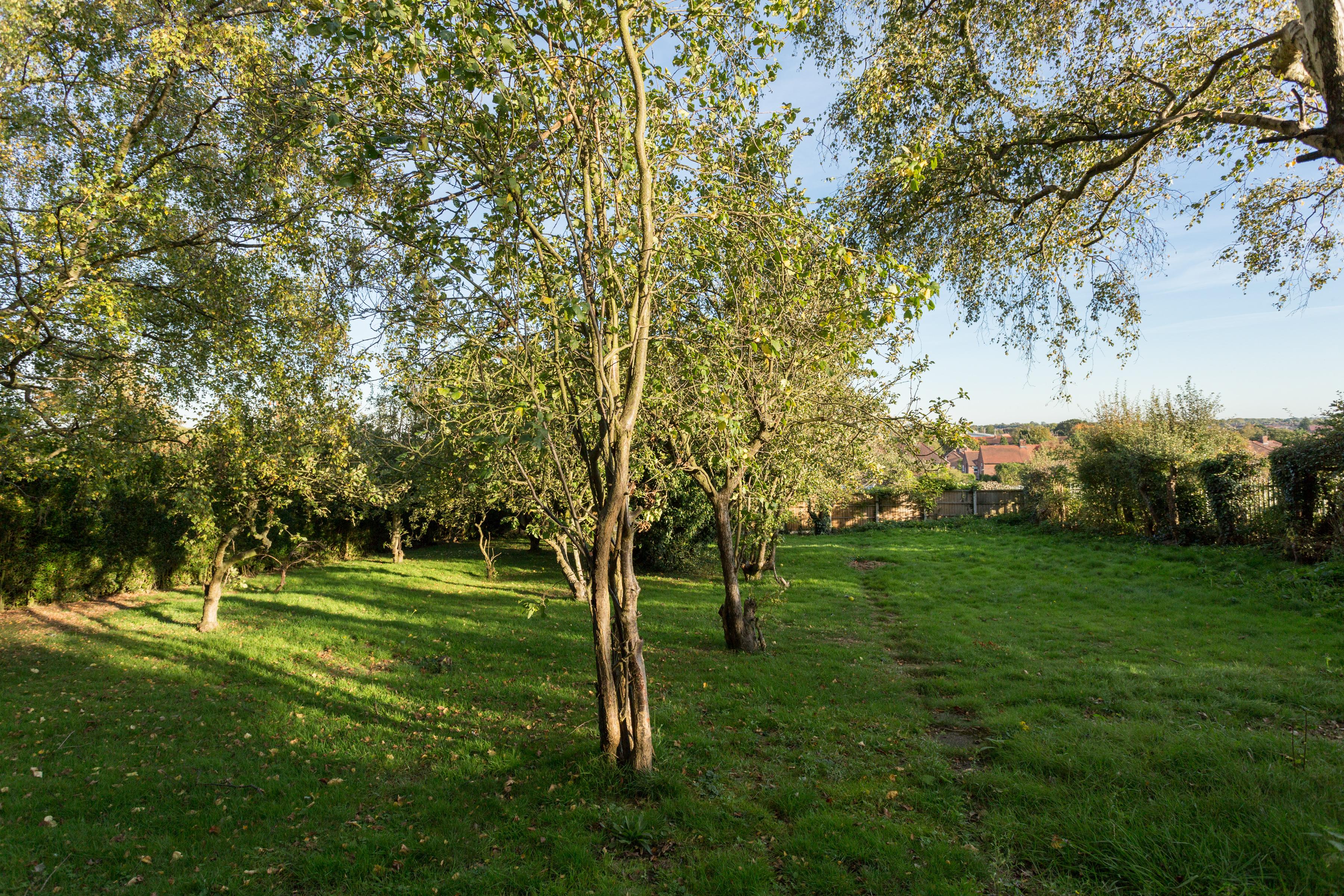 53 Hillfield House, Askham Lane, York - property photo #10