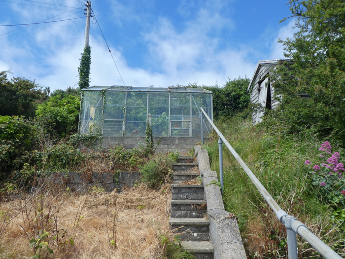 Leads up to a former vegetable garden and an Aluminium Greenhouse with mature grape vine.
